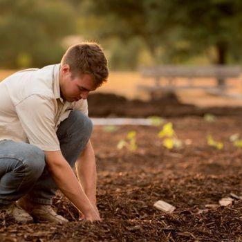 """Dia do agricultor é celebrado em 28 de julho; Dom Aloísio agradece ao povo rural, que """"alimenta a população e preserva a mãe terra"""""""